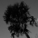 Bonita Beach Florida.